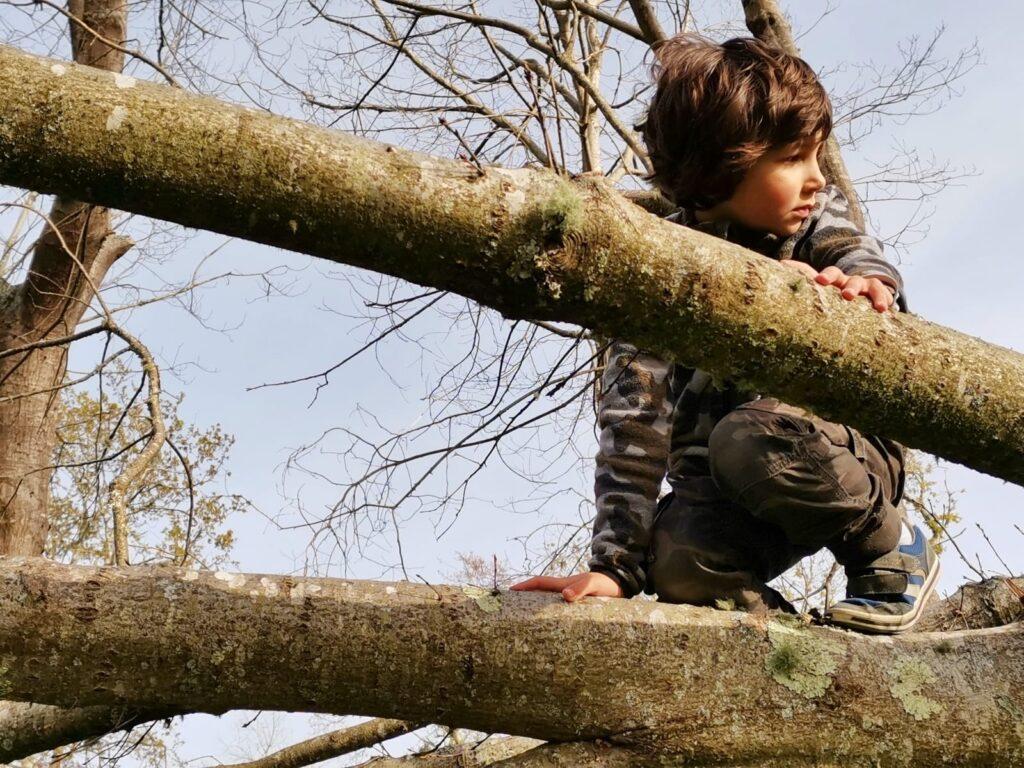 Neno nunha árbore. Infancia e natureza díade importante.